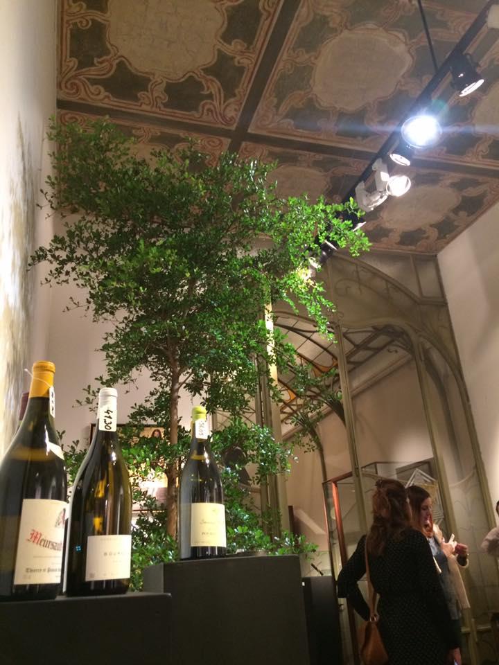 Divine Wines 1
